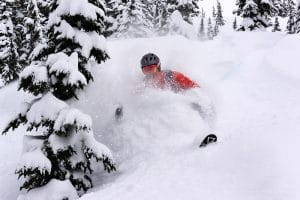 Heli Skier In Deep Powder Tree Skiing
