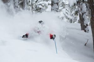Deep Powder Heli Skiing Through BC Old Growth Trees