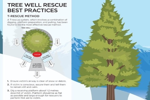 Tree Well Dangers